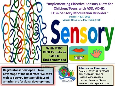 Why Teens With Learning And Attention >> Implementing Effective Sensory Diets For Children Teens With Autism